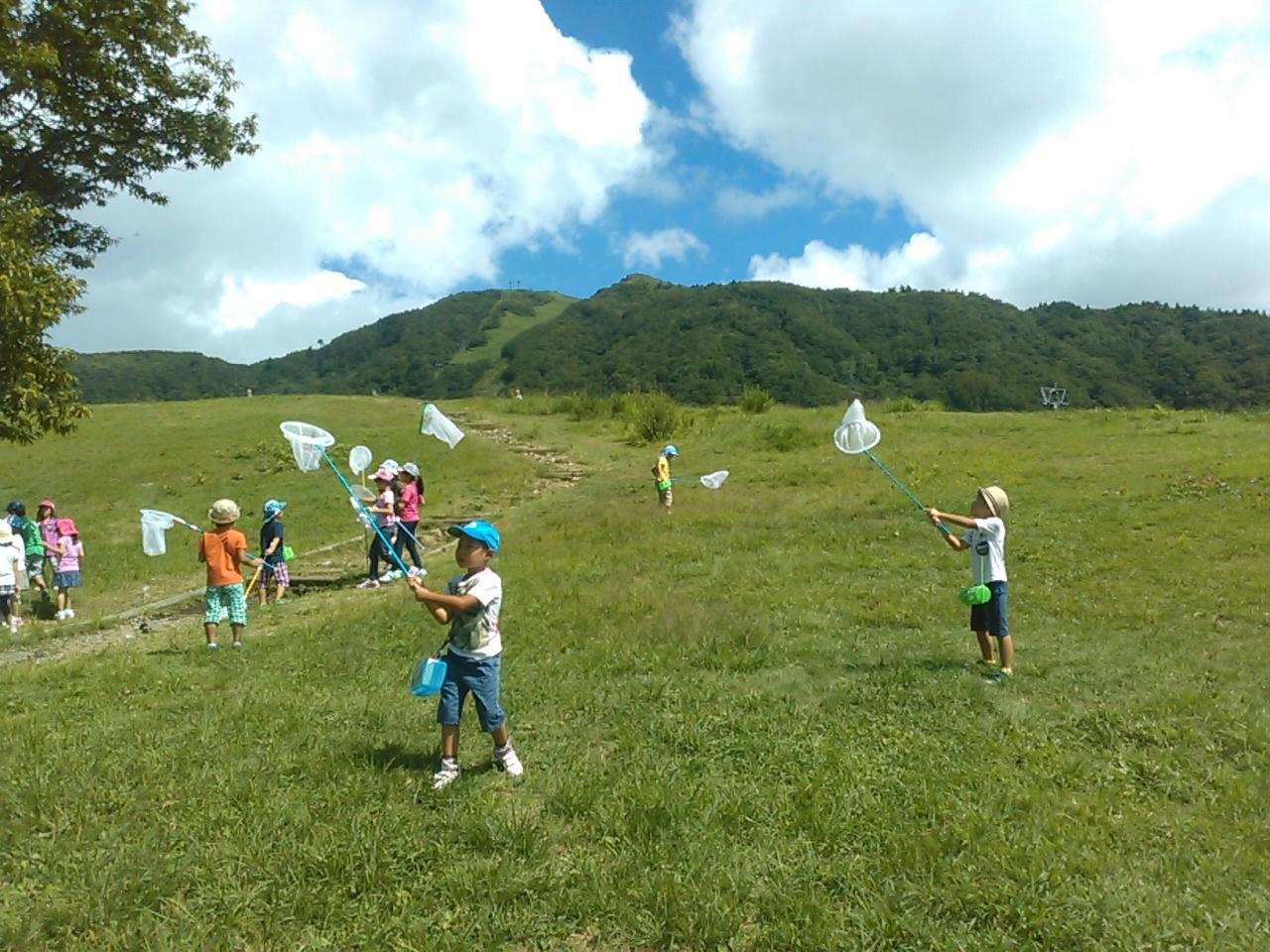 キャンプ二日目・山遊び7