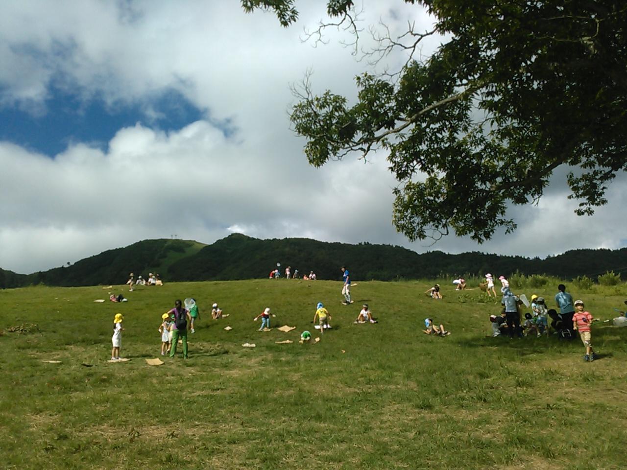キャンプ二日目午後・山遊び5