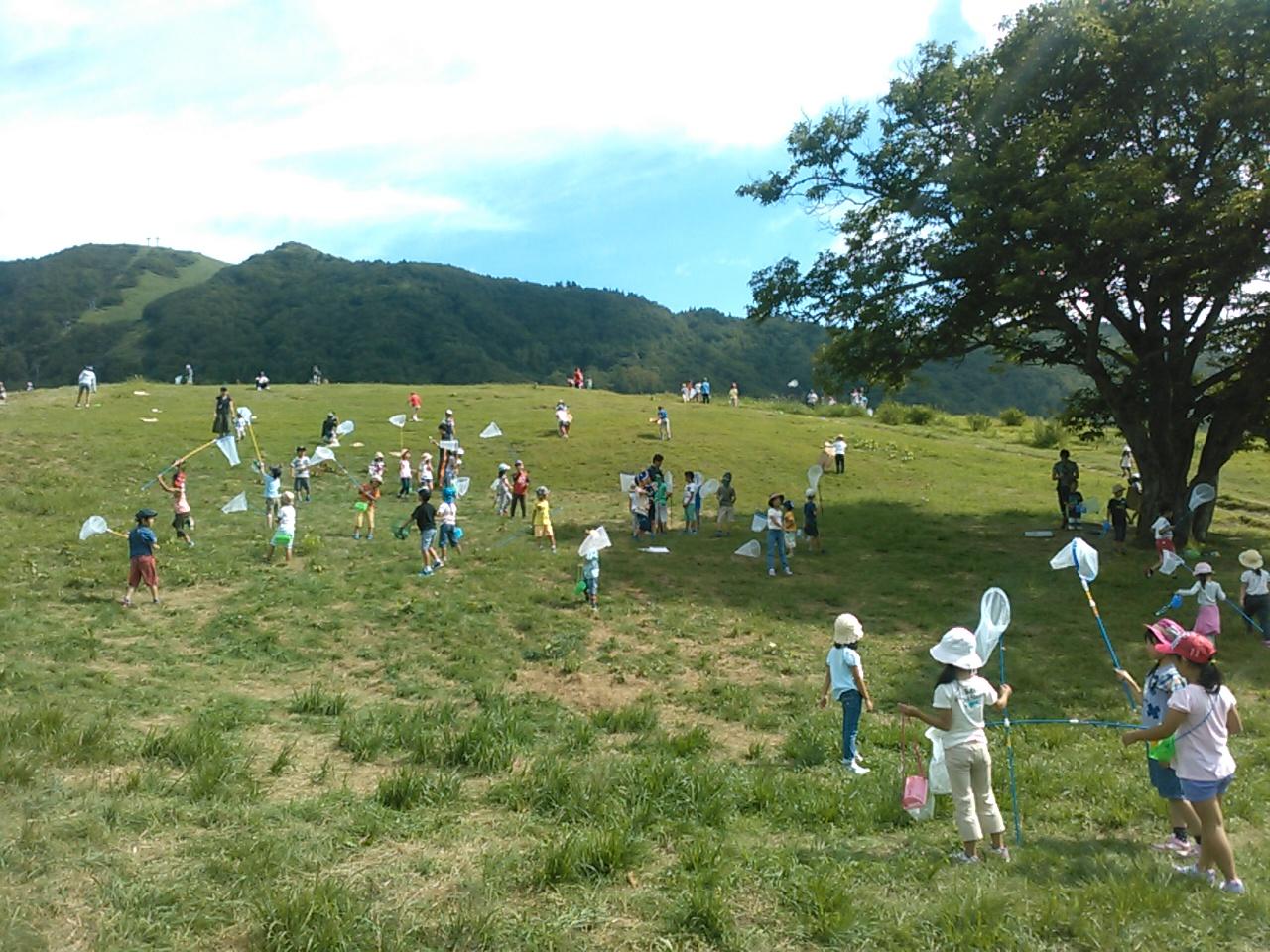キャンプ三日目・山遊び4