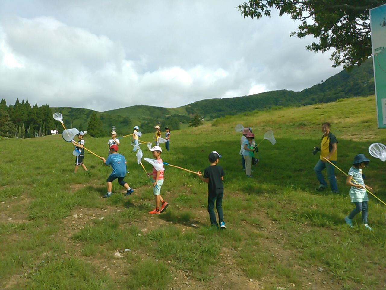 サマーキャンプ2日目午前・山遊び1