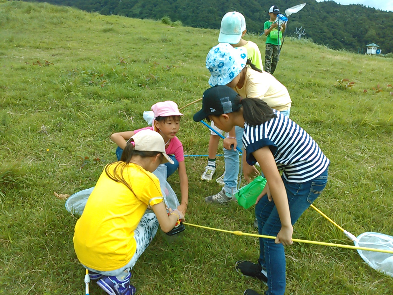 サマーキャンプ2日目午前・山遊び2