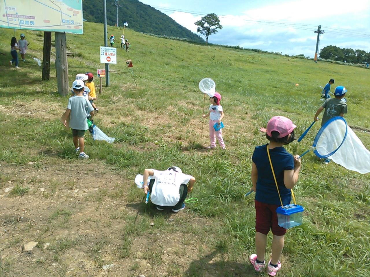サマーキャンプ2日目午前・山遊び3